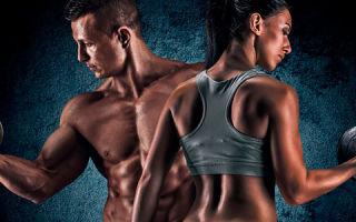 Холестерин и гормоны: уровень тестостерона и сексуальная функция