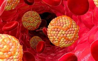 Холестерин (холестерол) — что это такое? Кратко о главном