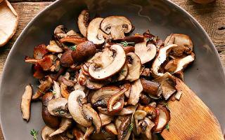 Можно ли есть грибы при повышенном холестерине? Лечебным свойствам вешенки