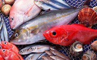 Рыба при повышенном холестерине: какие виды можно есть?