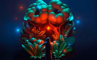 ТОП-8 методов проверки сосудов головного мозга и шеи