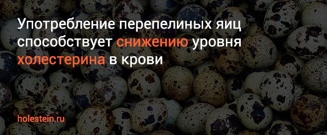 Влияние перепелиных яиц на холестерин