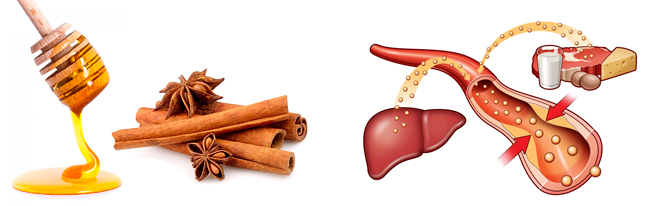 Влияние корицы на холестерин и сосуды