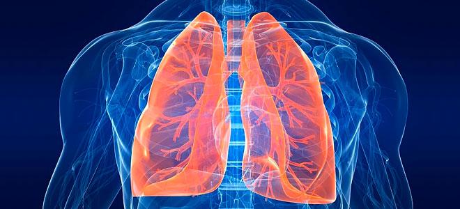 Атеросклероз легких: что это такое, лечение, симптомы болезни