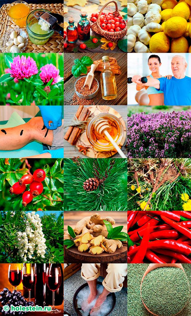 Народные средства от атеросклероза сосудов