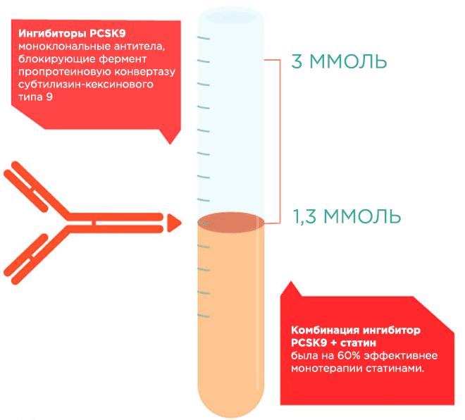 Эффективность комбинации PCSK9 и статинов