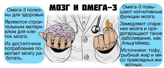 Польза Омега-3 для мозга